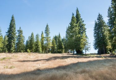 Redwood Mountain Ranch Retreat – A Philo Ridge Top Ranch